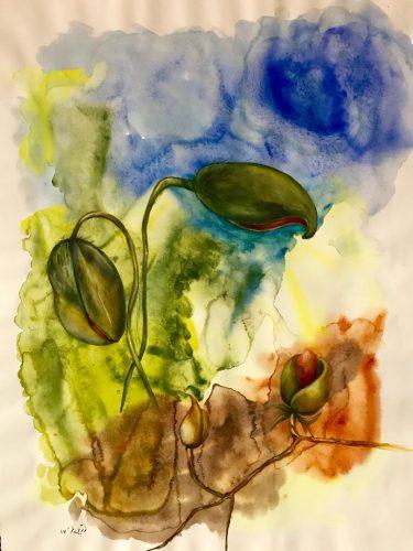 Mohnblumen Aquarell auf Papier Bild: 57 x 76 cm